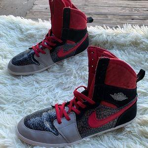 Air Jordan 1 Skinny Shoes